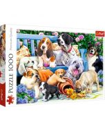 Puzzle catei - 1000 piese